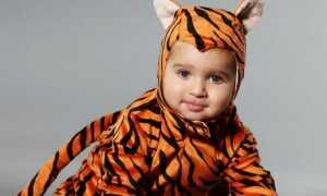 Какими будут дети, рожденные в 2022 году Тигра