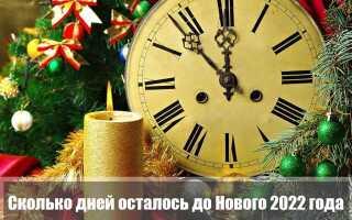 Сколько дней осталось до Нового года 2022