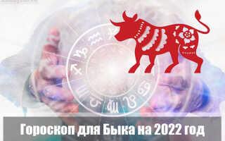 Гороскоп на 2022 год для Быка