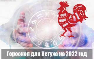 Гороскоп на 2022 год для Петуха