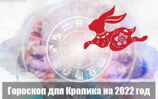 Гороскоп на 2022 год для Кролика (Кота)