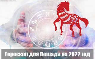 Гороскоп на 2022 год для Лошадей