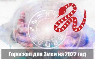 Гороскоп на 2022 год для Змеи
