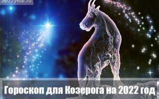 Гороскоп для Козерога на 2022 год