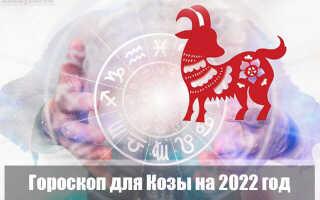 Гороскоп на 2022 год для Козы (Овцы)