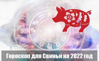 Гороскоп на 2022 год для Свиньи (Кабана)