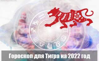 Гороскоп на 2022 год для Тигра