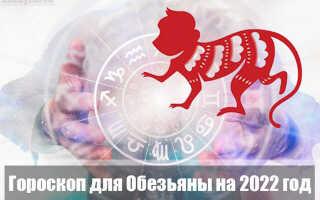 Гороскоп на 2022 год для Обезьяны