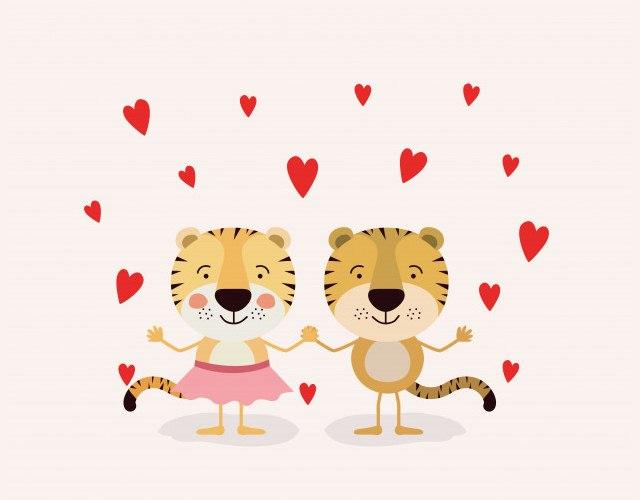 любовь и тигры