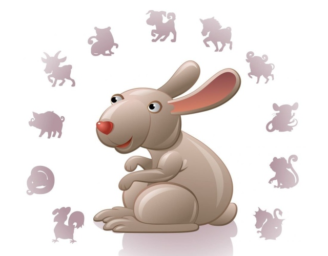 совместимость кролика с другими знаками