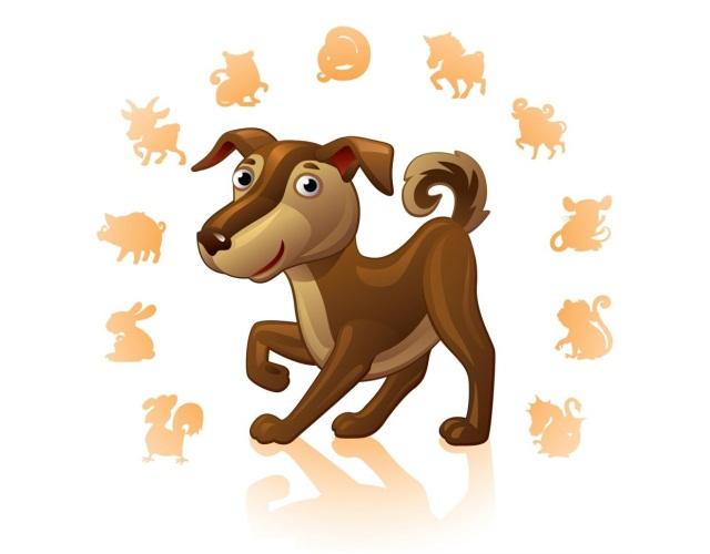 совместимость собаки с другими знаками