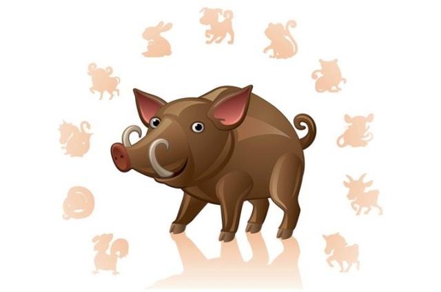 совместимость свиньи с другими знаками