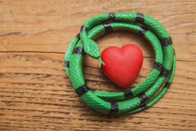 змея и сердце